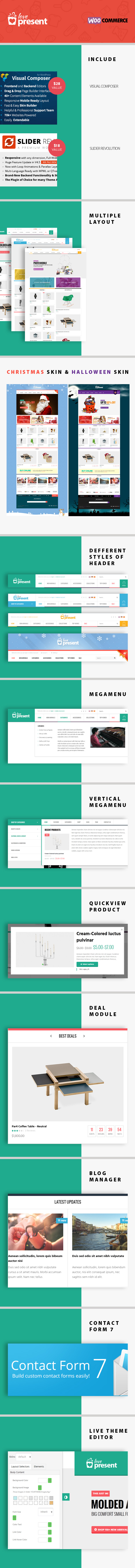 Present - Pro GiftShop WordPress Theme