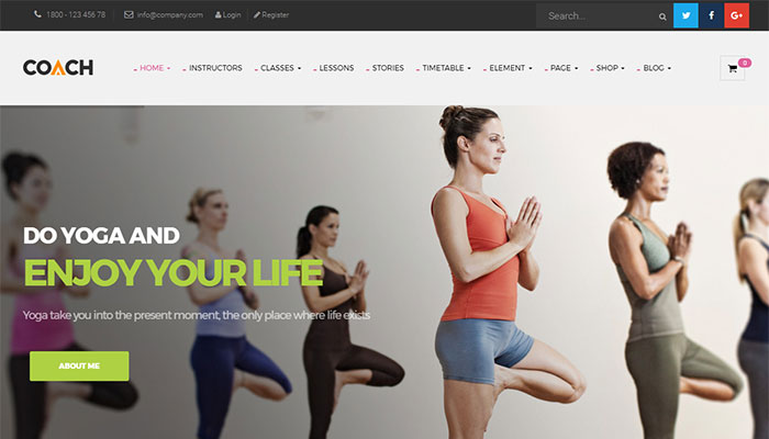 Top 12 Best Gym Fitness WordPress Themes 2017