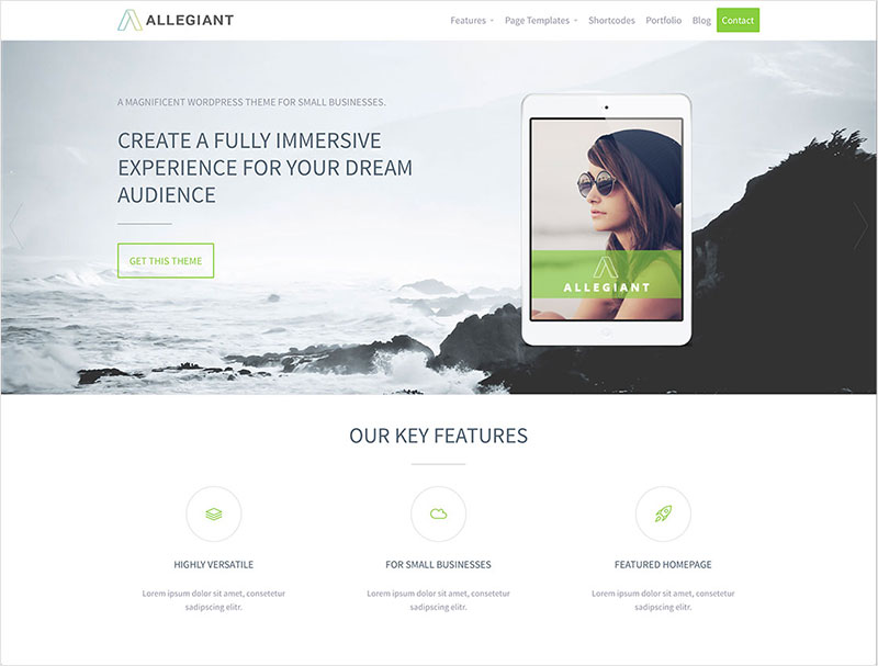 allegiant free wordpress theme