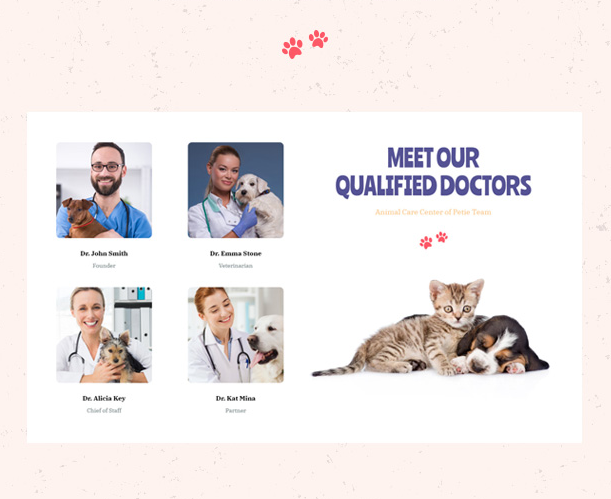 Professional Dotors Showcase in Petie Best Pet Care Center WordPress theme