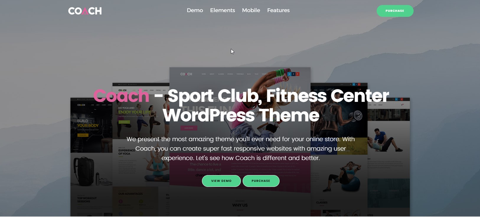 Coach - Sport Club & Fitness WordPress Theme