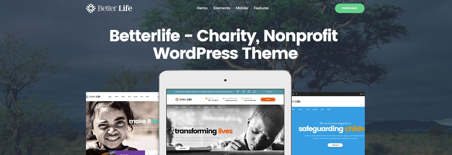 Powerful WordPress Theme For Churches & Charity