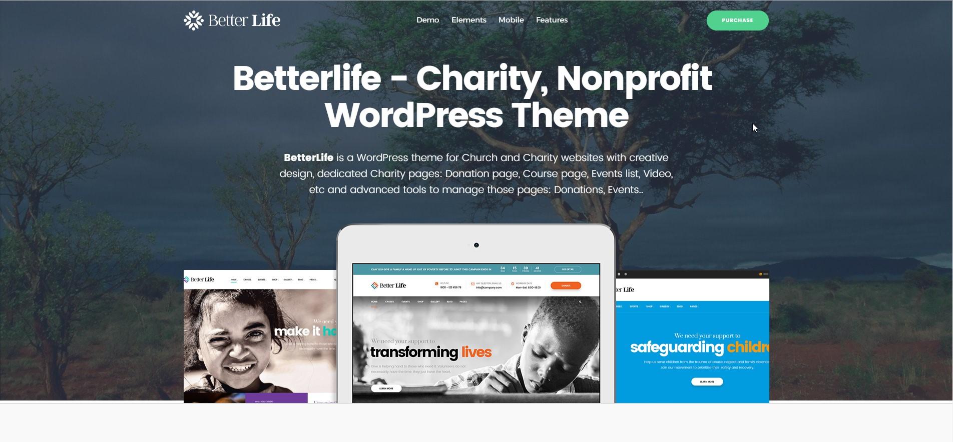 BetterLife - Non-Profit WordPress Theme