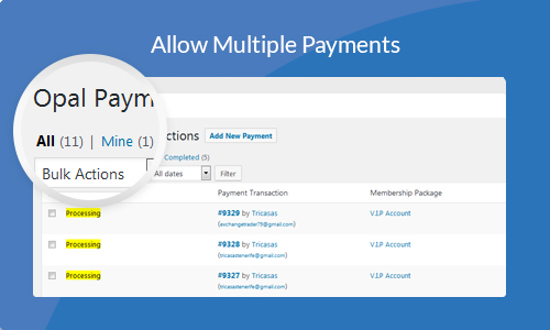 Allow Multiple Payments