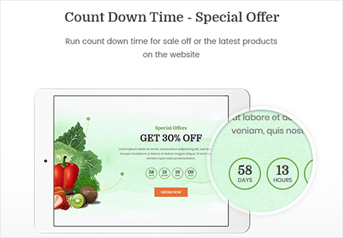 Countdown Time – Special Offer