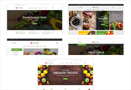 05+ Amazing Food Homepage Demos