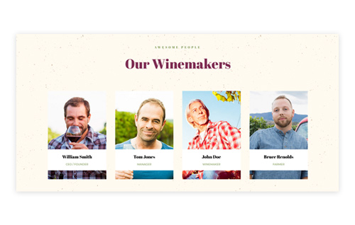 Awesome Winemaker