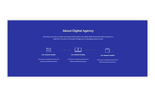 12. Perfect Digital Agency Procedure