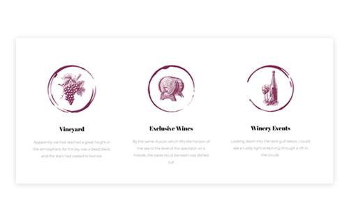 Wine Process Showcase